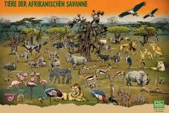 schwarwel-wimmelposter-wimmelbild-savanne-zoo-tiere