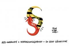 """Urteil zu sächsischer AfD-Wahlliste mit 30 statt bislang 18 Kandidaten: CDU-Landtagspräsident sieht """"Chancen-Gleichheit gewahrt"""""""