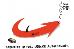 Mordfall Lübcke AfD