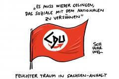 Irritierende Aussage in Sachsen-Anhalt: CDU-Politiker bringen Koalition mit AfD ins Spiel