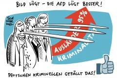 190805-afd-kriminal-1000-karikatur-schwarwel