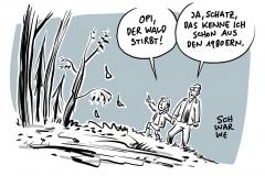 Umweltstudie: Hälfte der europäischen Baumarten bedroht