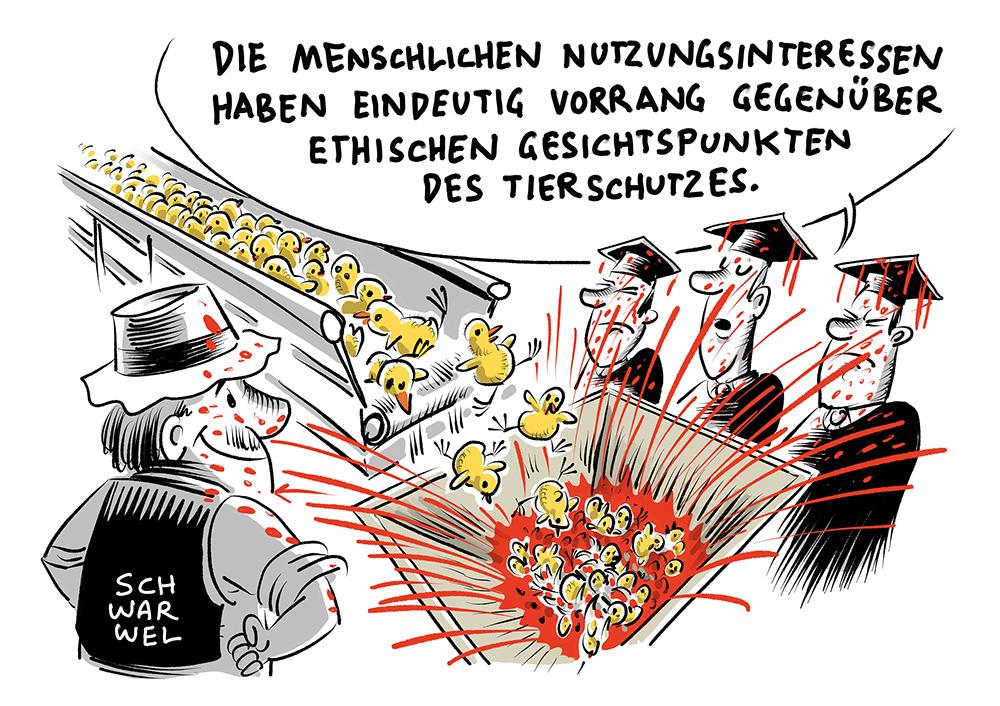 Urteil zu Massentötungen von Küken: Kein Verstoß gegen das Tierschutzgesetz, dass jährlich fast 50 Millionen männliche Ein-Tages-Küken in Deutschland durch 'Kükenschreddern' getötet werden
