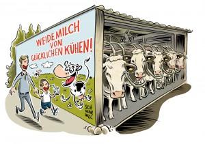 Tierhaltung in Deutschland: Bauministerin gegen Massenställe