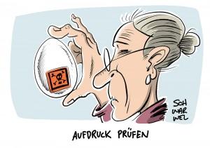 Insektizid-Belastung: REWE und Penny rufen Eier zurück, Warnung für 11 Bundesländer