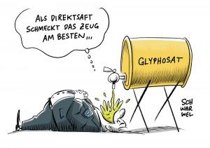 EU verlängert Zulassung: Ja zu Glyphosat sorgt für Krach in Berlin