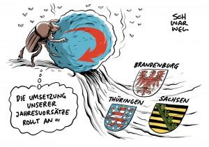 Landtagswahlen in Ostdeutschland: AfD stellt mehr als eine Mio Euro für Wahlkampf bereit