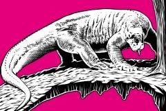 zoo-tropleucht11-komodowaran-ansicht-lores
