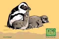 zoo-pingu-pk152x109.fh11