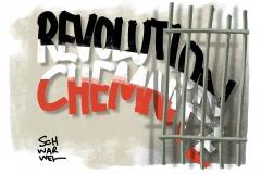 190625-revolution-chemnitz-1000-karikatur-schwarwel