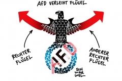 Machtkampf in der AfD: Beobachter sehen Übernahme der Partei durch die rechtsradikale Gruppe
