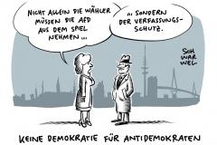 AfD Hamburg: Der Aufwärtstrend ist gebremst
