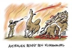 Maßnahme gegen die Dürre: Australien lässt 10.000 Kamele erschießen