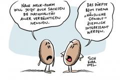 Vorbild Mecklenburg-Vorpommern: Auch Sachsens Polizei will Nationalität aller Verdächtigen nennen
