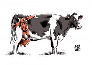 Zu viel Milch und Milchpreis im Keller: Milchbauern kämpfen ums Überleben